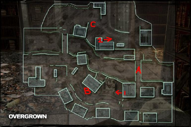 Call of Duty 4 Guide - Overgrown